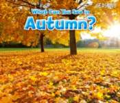 What Can You See In Autumn? Smith, Sian